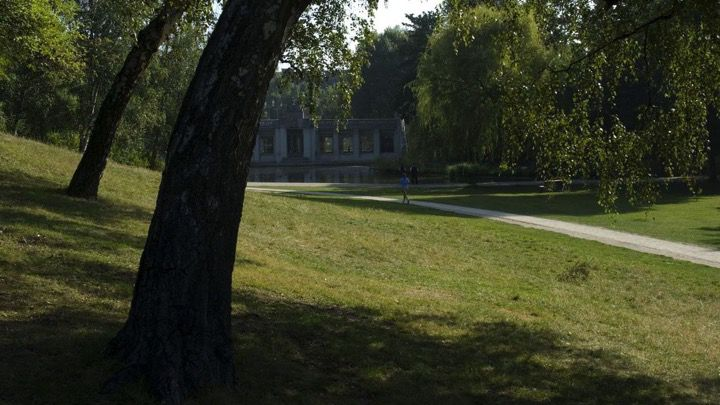 Person running and jogging in summertime through a green city park, such as at the Berlin zoo or in Tiergarten.